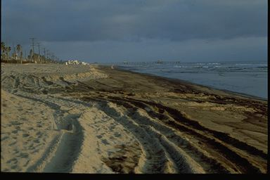 Huntington Beach oil spill 1990.